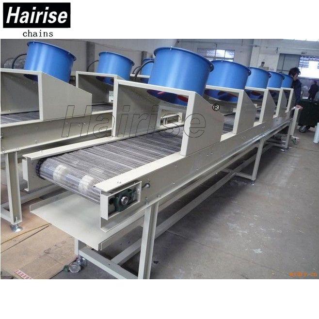 Hairise Stainless Steel Wire Mesh Belt Conveyor