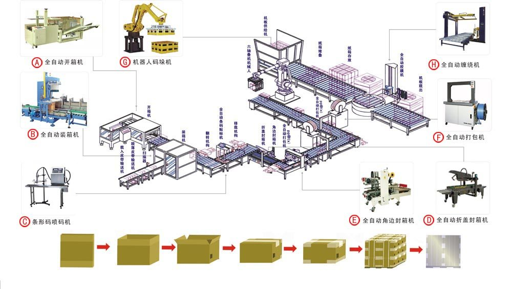 Hairise Whole Conveyor Line Design in Packaging Industry