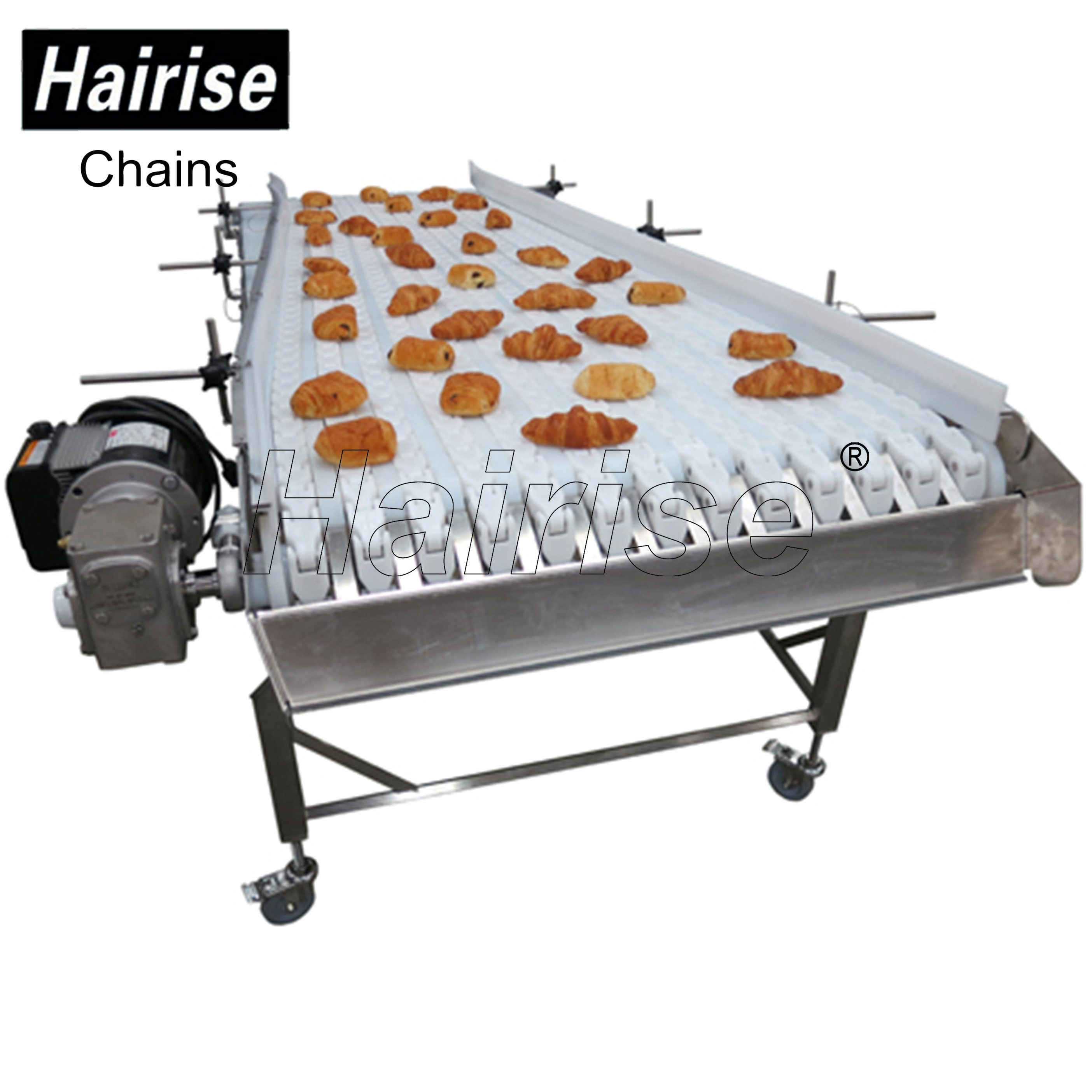 Hairise Straight Conveyor for Bread Industry(or Other Food)