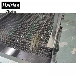 Hairise Stainless Steel Wire Mesh Belt Conveyor