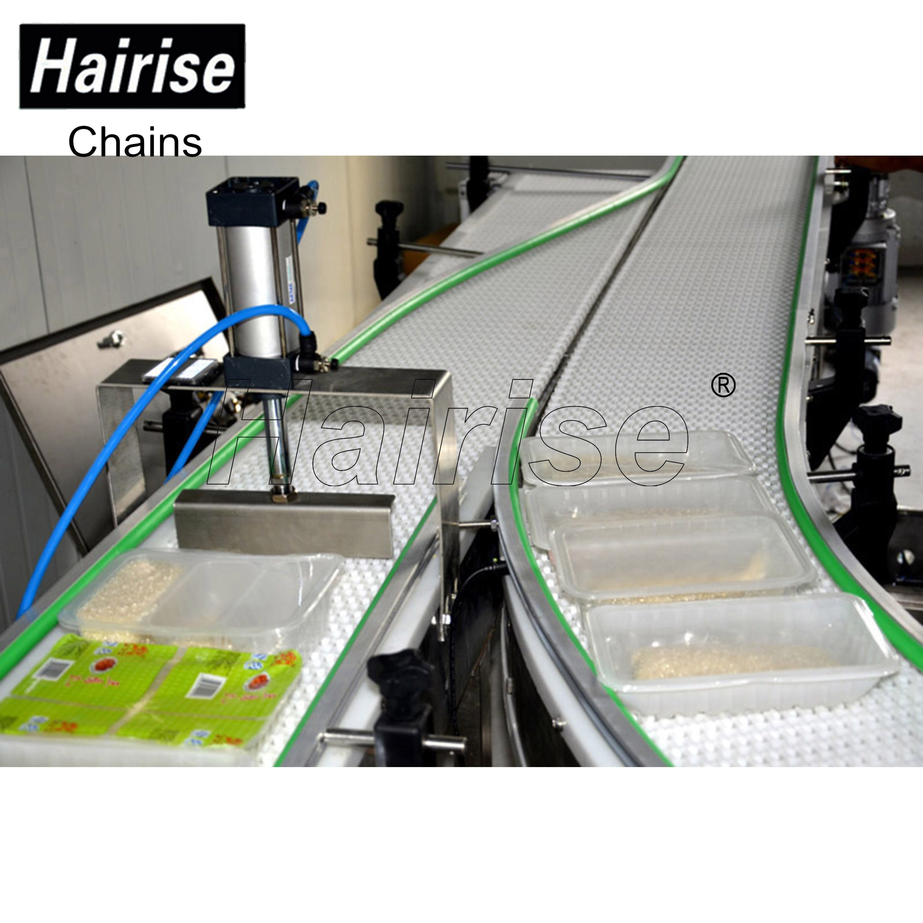 Hairise Food Grade Plastic Belt Conveyor System with Detector Featured Image