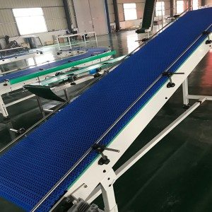 Hairise Endless Type Modular Belt Conveyor Sale in USA