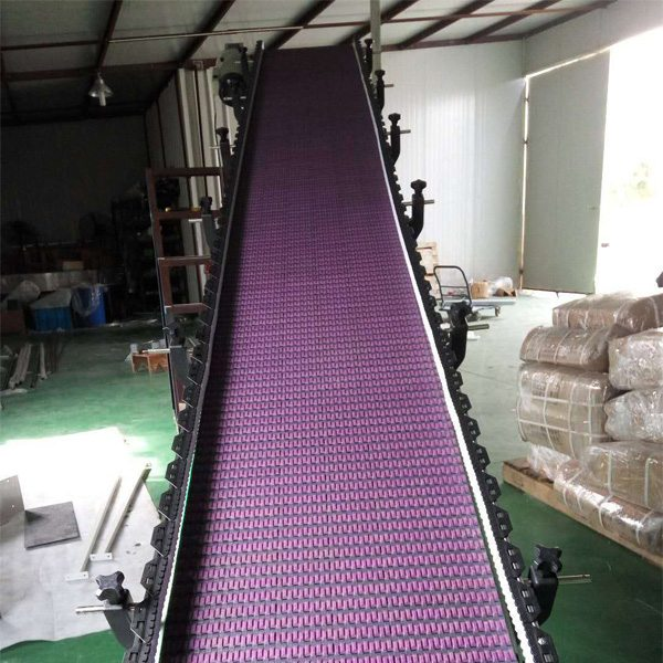 Hairise Inclined Modular Belt Conveyor with Rubber Featured Image