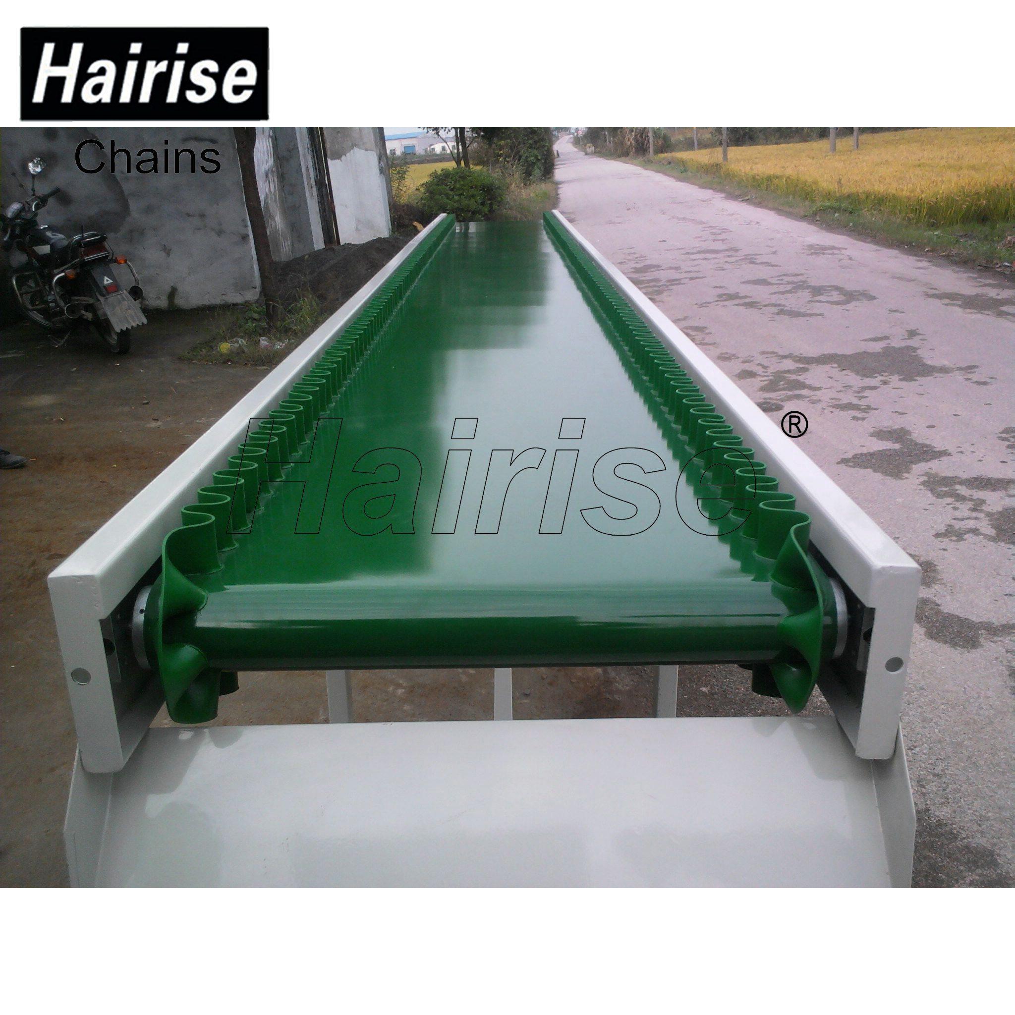 Hairise Straigh PVC Belt Conveyor System with Adjustable Speed