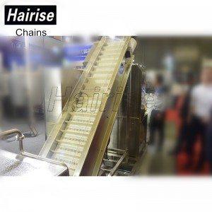 Hairise Cleaning Conveyor with Modular Belt Har-6100