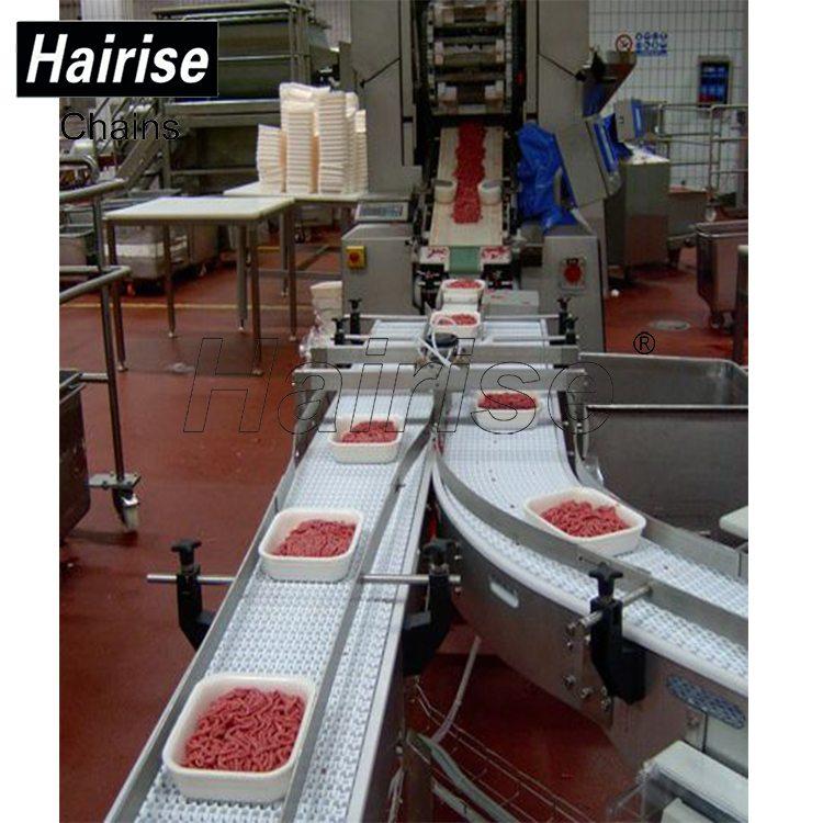Hairise Food Grade Modular belt Conveyor for Slaughter Line